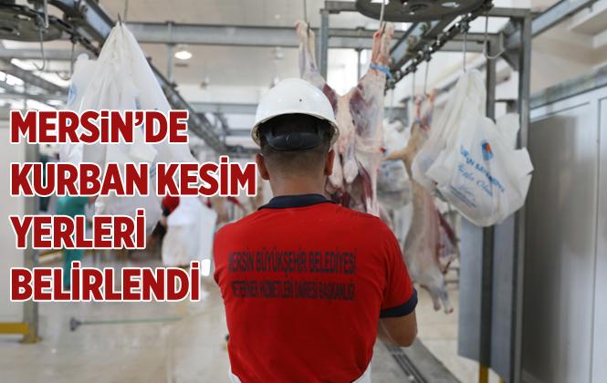 Mersin'de 26 Noktada Mobil Kurban Kesimi Yapılacak