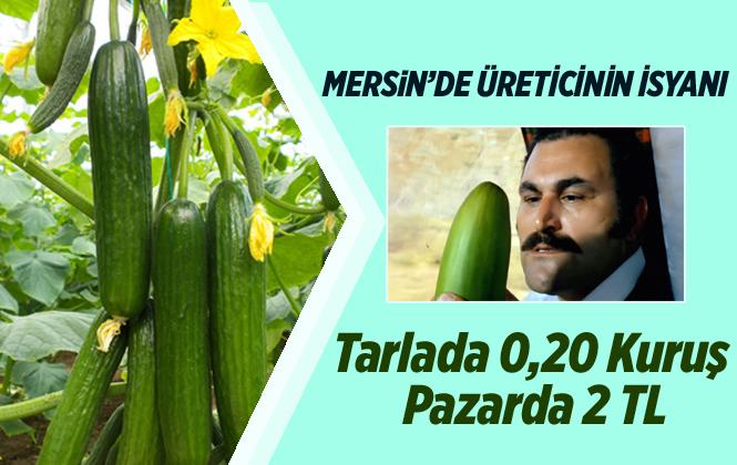 Mersin'de Çiftçinin Salatalık İsyanı