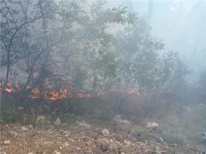 Mersin Tarsus'ta orman yangını söndürüldü