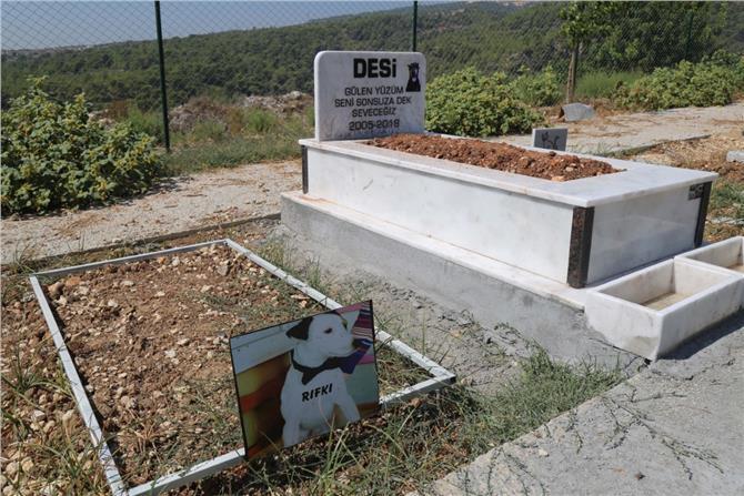 Mezitli Belediyesi Hayvan Mezarlığı Anıları Barındırıyor