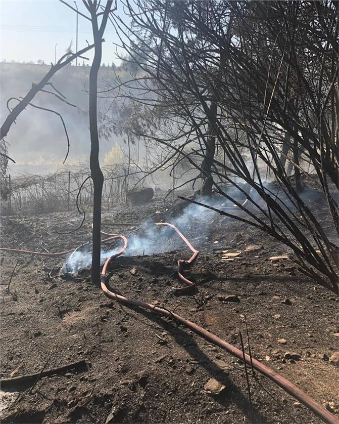 Mersin Kuyuluk'ta Orman Yangını