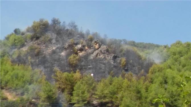 Anamur Köprübaşı Mahallesinde Orman Yangını