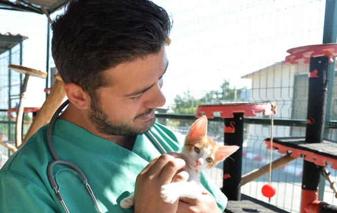 Mersin Büyükşehir Veterinerleri Hayvanseverleri Uyardı