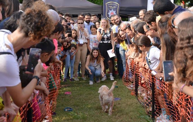 Mersin'in İlk Hayvan Festivali Patifest Başladı! Patifest'in İlk Gününe Hayvan Severlerden Tam Not