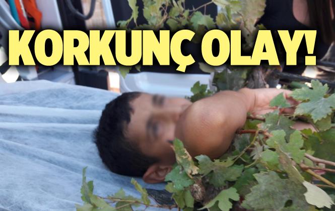 Mersin Tarsus'ta Korkunç Olay 1 Çocuk Yaralandı