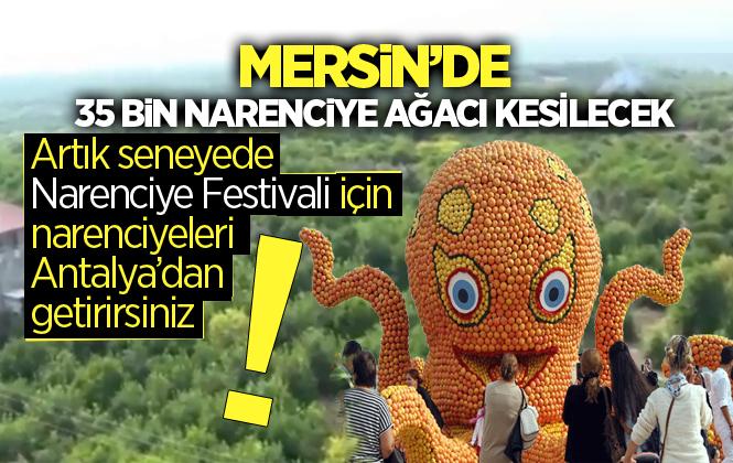 Mersin'de 35 Bin Narenciye Ağacı Kesilecek İddiası