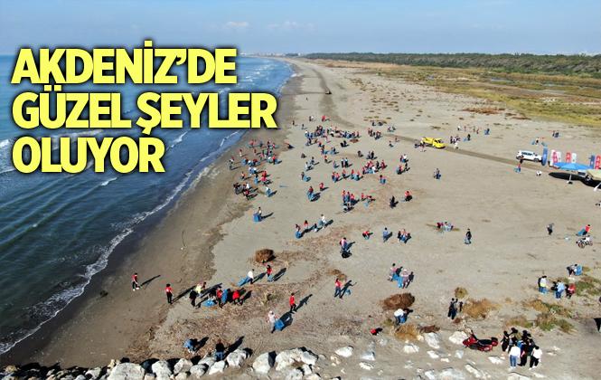 Başkan Gültak, Adanalıoğlu Sahilinde Düzenlenen Temizlik Kampanyasına Katıldı