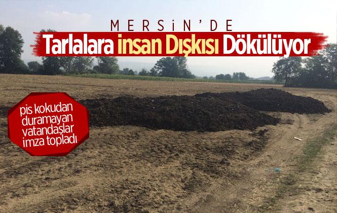 Mersin'de Tarlalarda İnsan Dışkısı Gübre Olarak Kullanılmasından Doğan Sorunlar Vatandaşı İsyan Ettirdi!