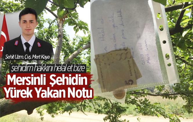 Şehit Uzman Çavuş Mert Kaya Erik Bahçesinde Yediği Eriklerin Parasıyla Birlikte Not Bıraktığı Ortaya Çıktı