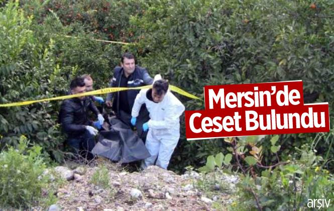 Mersin Tarsus'ta Bahçede Ceset Bulundu
