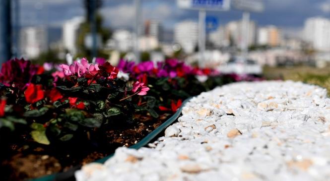 Mersin'in Dört Bir Yanı Çiçeklerle Bezendi