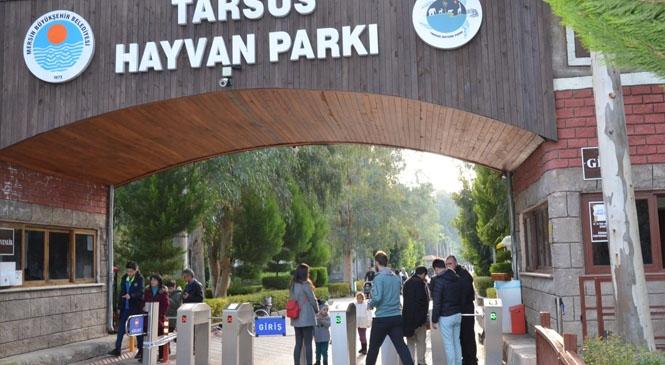 Tarsus Hayvan Parkı Öğrencilere Ücretsiz