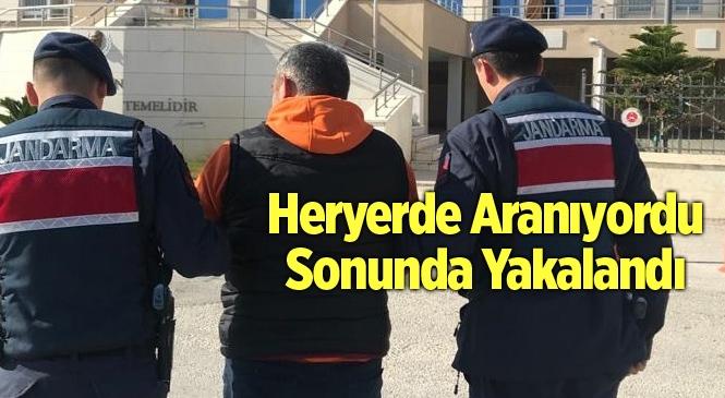 Mersin Silifke'de 8 Yarı Suçtan Aranan Zanlı Yakalandı