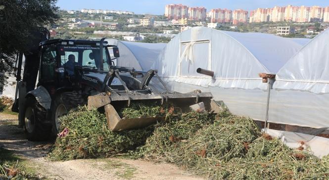 Erdemli'de Tarım Arazilerinde Temizlik Çalışması