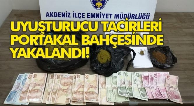 Uyuşturucu Satanlar Portakal Bahçesinde Yakalandı! Mersin'de Uyuşturucu Ticareti Yapan Şahıslara Göz Açtırılmıyor