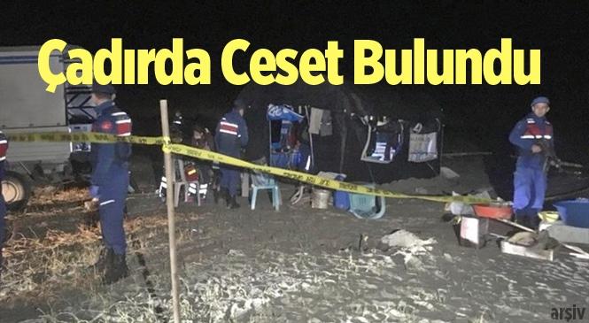Arı Bekçisi Halil Öztürk'ün Cansız Bedeni Çadırda Bulundu