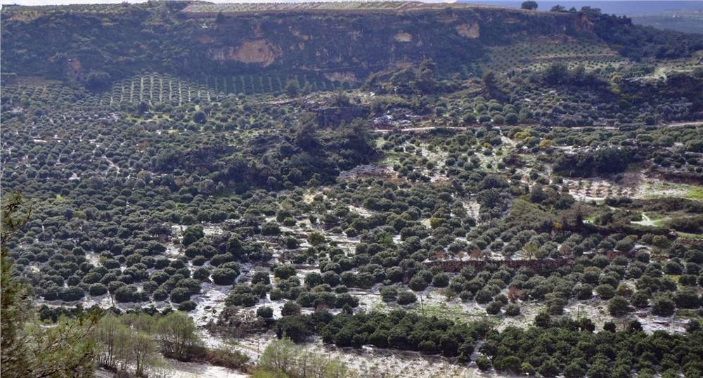 Mersin'in Erdemli ve Mezitli İlçelerinde Dolu Afeti