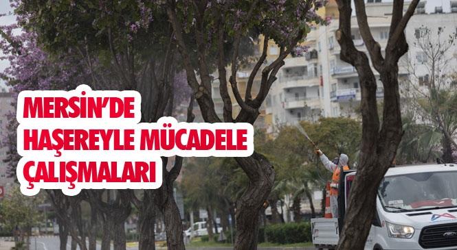 Yasak Sürecinde Mersin'in Boş Sokakları Dezenfekte Ediliyor! Haşereyle Mücadele Çalışmaları Aralıksız Sürüyor