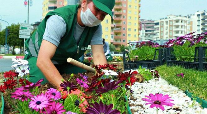Mersin, Yaz Çiçekleriyle Rengarenk Oldu! Mersinliler, Özledikleri Parkları En Güzel Haliyle Bulacak