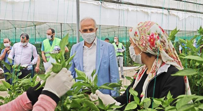 Akdeniz Belediye Başkanı Gültak, 1 Mayıs'ta, Seralarda Çalışan Tarım İşçilerini Ziyaret Etti