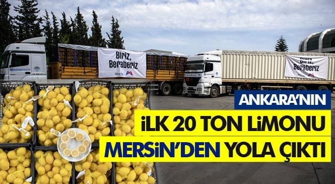 Mersin'in Öncülüğünde Üç Büyükşehir'in Güç Birliği, Hem Limon Üreticisine Hem de Vatandaşa Yarıyor! Ankara'nın 50 Ton Limon Talebinin İlk 20 Tonu Yola Çıktı