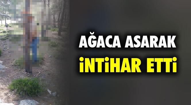 Mersin Erdemli'de 43 Yaşındaki Maden İşçisi Adam Kendini Ağaca Asarak İntihar Etti