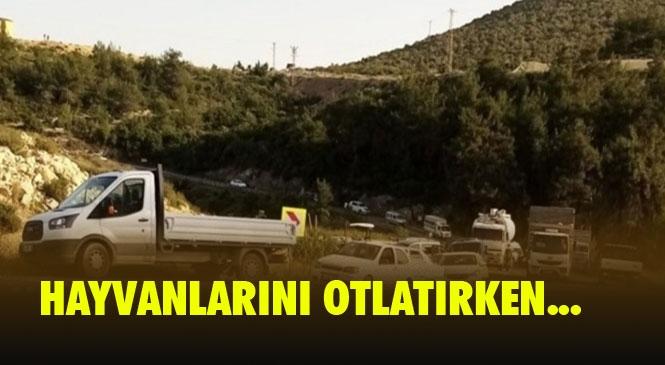 Trafik Kazası 1 Ölü! Mersin'in Tarsus İlçesinde Meydana Gelen Trafik Kazasında Bir Kişi Hayatını Kaybetti.