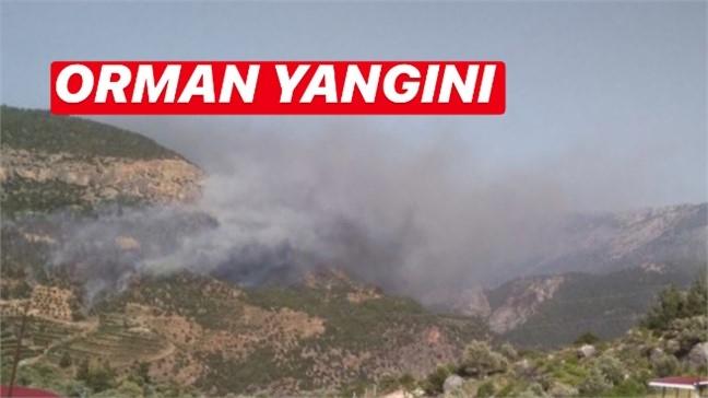 Mersin Silifke - Mut Yolu Kargıcak Köyü Çıkışı Orman Yangını Meydana Geldi