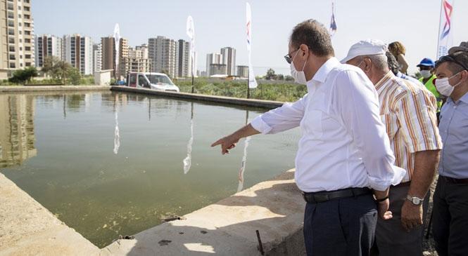 Mersin Silifke'de Sinek Larvalarını Yiyen 26 Bin Balık, Tarımsal Sulama Havuzlarına Bırakıldı! Lepistes Balıkları İle Hem Ucuz, Hem Temiz Bir Mücadele Yapılacak