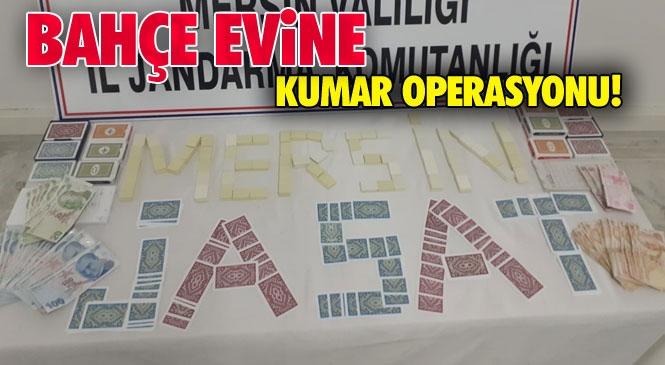 Zeytin Bahçesindeki Evde Operasyon! Mersin Mut Yapıntı Mahallesinde Jandarmadan Kumar Operasyonu!