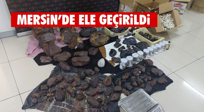 Mersin'de Değeri 11 Milyon TL Olan Toplam 145 Kilo Balina Kusmuğu Ele Geçirildi