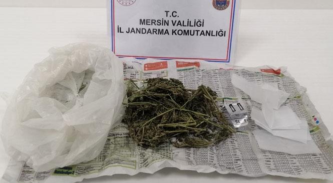Mersin Silifke'ye Tatile Gelen ve Üzerinde Uyuşturucu Madde Bulunduran Şahıs Hakkında İşlem Yapıldı