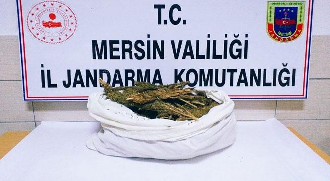 Yenişehir Bozön Mahallesinde Kaçmak İsterken Jandarma Tarafından Yakalanan Şahısların Attığı Poşetten Esrar Çıktı