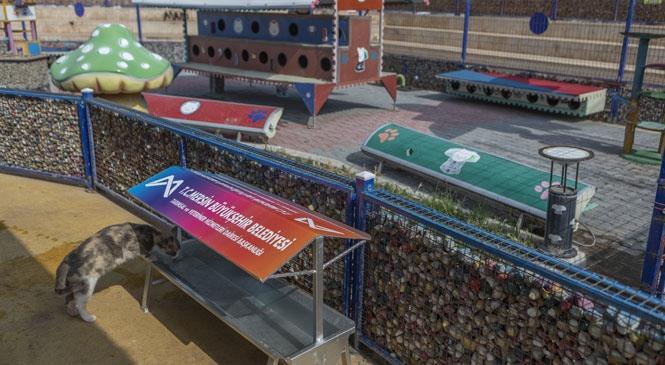 Mersin'de Patili Dostların Mama ve Su Tekneleri Özel Tasarımla Yapıldı! Bu Tekneler Patili Dostlar Tasarlandı