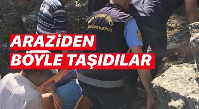 Mersin Gülnar'da Dağlık Bölgede Çıktığı Ağaçtan Düşen Adamı İtfaiye Ekipleri Taşıdı