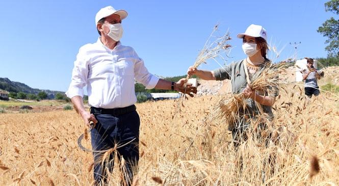 Mersin Büyükşehir'den Hayvancılık Konusunda Yeni Proje: Ailelere Koyun ve Keçi Desteği Verilecek