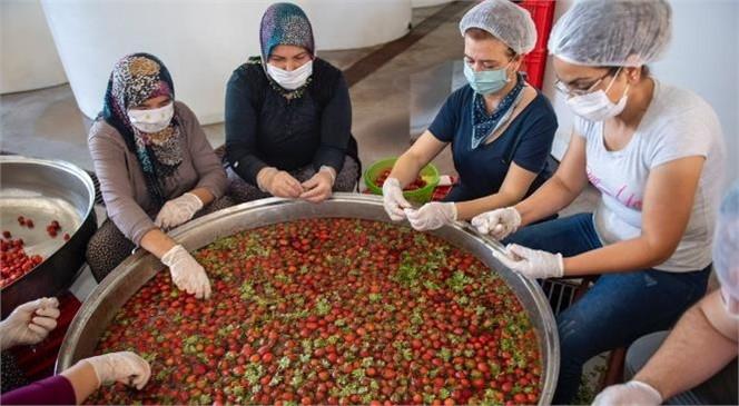 Kadın Kooperatifleri Hem Üreticiye Hem de Emekçiye Katkı Sunuyor