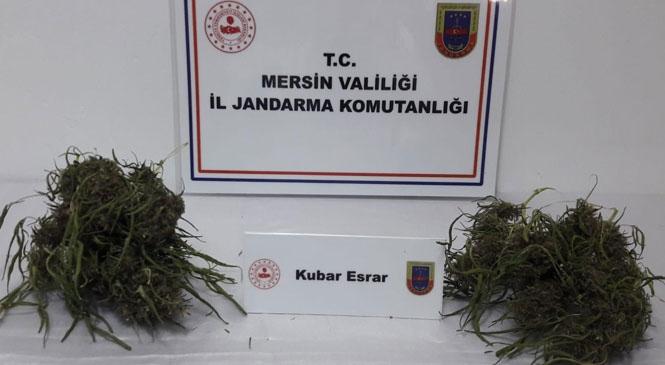 Mersin Tarsus'ta Uyuşturucu Kullanan Şahıs 120 Gram Esrarla Yakalandı