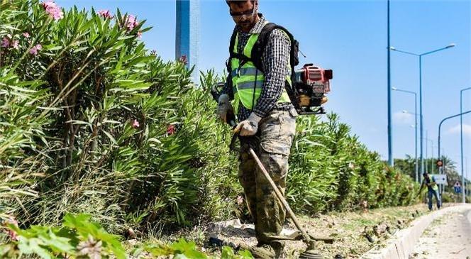 Park ve Bahçeler Ekiplerinin Kocahasanlı'dan Kızkalesi'ne Kadar Yoğun Temizlik Mesaisi