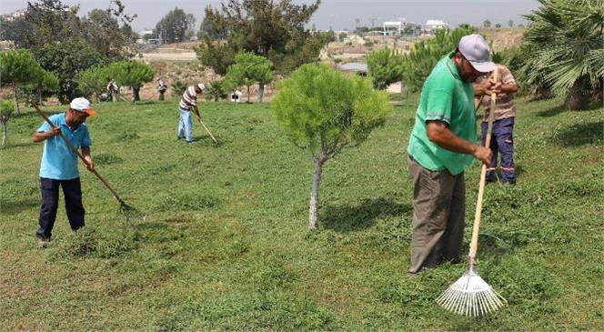 Daha Yeşil Bir Toroslar İçin Çalışmalar Sürüyor