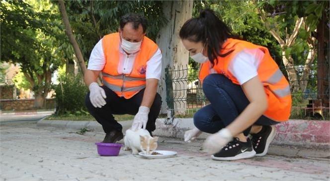 Sokak Hayvanlarına Umut Oluyorlar