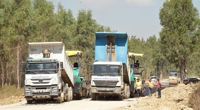 Mersin Tarsus'ta Bulunan Bataklık Alandaki Karabucak Orman Yolunda Güçlendirme ve Asfalt Çalışması