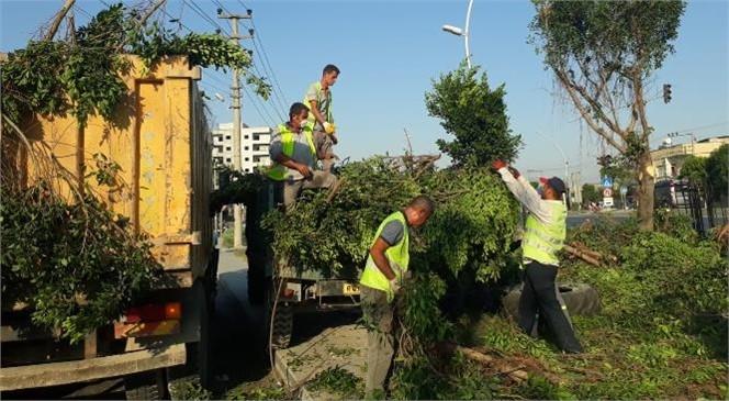 Büyükşehir Ekiplerinden Tarsus'un Dört Bir Noktasında Bakım Çalışması