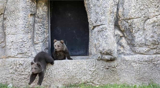 Doğa Parkı, Hijyen ve Temizlik İçin Pazartesi Günleri Ziyarete Kapatılacak! 28 Eylül'den İtibaren Her Pazartesi Doğa Parkı Kapalı Olacak