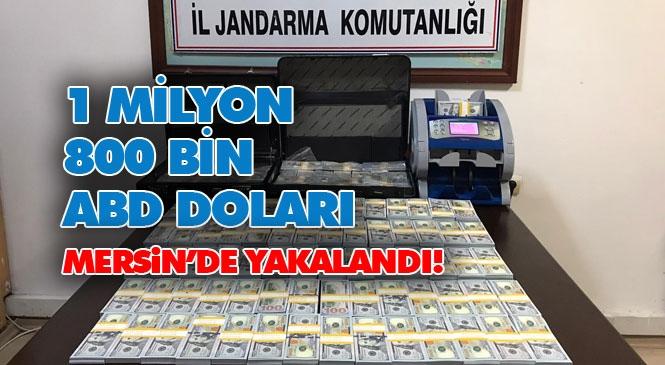 Jandarma Yakaladı! Mersin'de Sahte Amerikan Doları Operasyonu: 1 Milyon 800 Bin Sahte Amerikan Doları