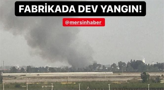 Mersin Tarsus - Yenice Arasındaki Bir Fabrikada Yangın Çıktı