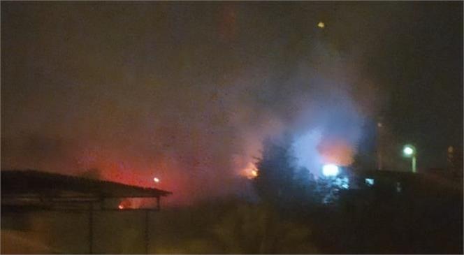 Mersin Tarsus Kent Merkezinde Bulunan Gözlükule Höyüğünde Gece Yarsısı Yangın Çıktı