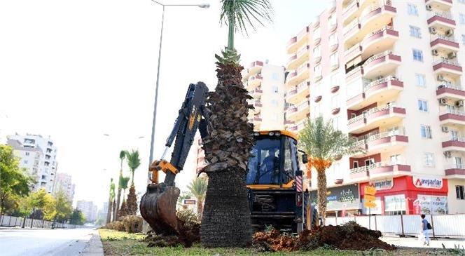 Forum Katlı Kavşağı Projesinde Ağaçlar da Unutulmadı