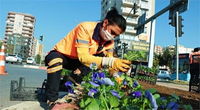 Mersin Büyükşehir, 430 Bin Çiçeği Toprakla Buluşturdu! Bezendiği Çiçeklerle Mersin Hep Güzelsin