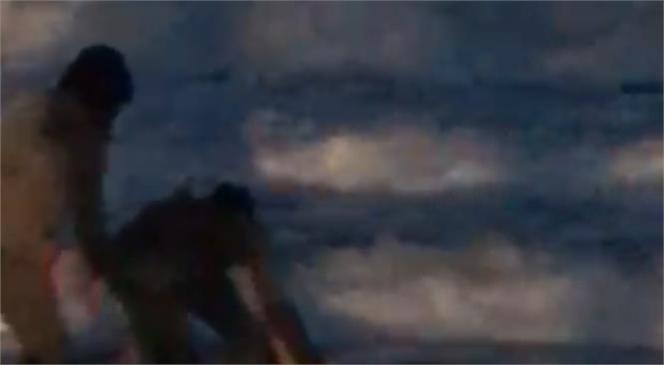 Mersin Mezitli Taşkıran Sahiline Vuran Yunus Vatandaşlar Kurtarılarak Denize Çekildi